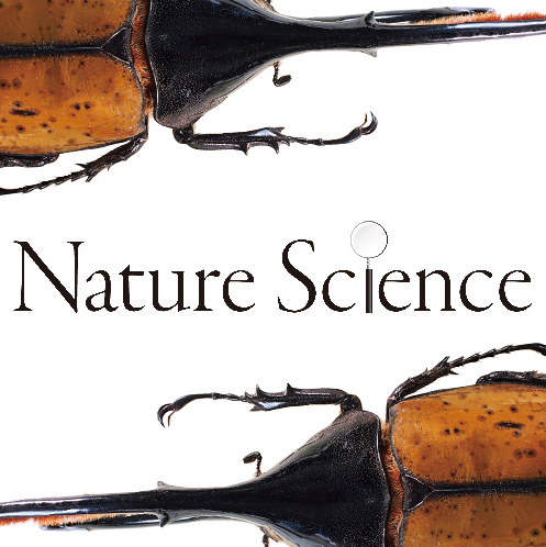 「Nature Science」開催中!<なんば店>
